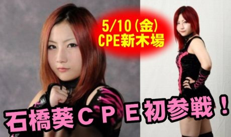 CPEキャットファイトに石橋葵初参戦!5・10THE キャットファイトサミット2013~女闘美伝説~新木場