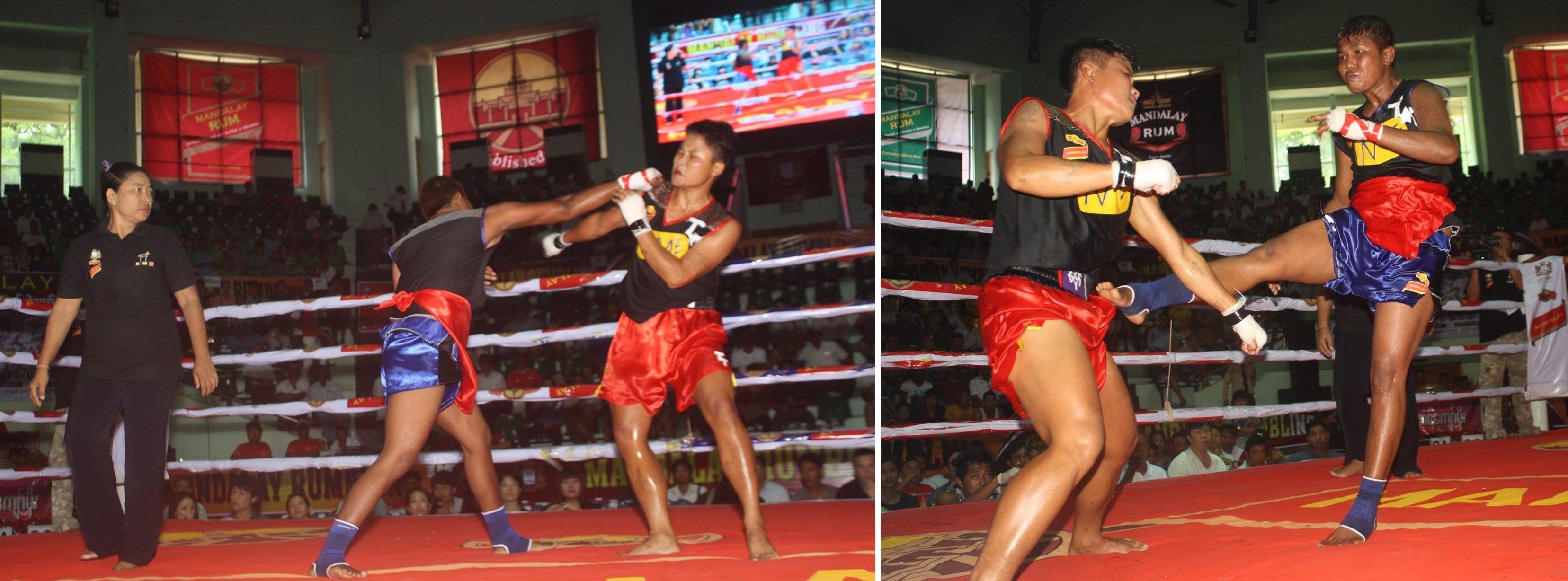 Mu Mu Htwe (King Cobra) VS Naw Chel Paw (Taung Ga Lay)- DRAW
